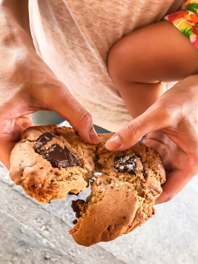 Stop by the Folded Hills Farmstead for a giant chocolate chip cookie the next time you're driving up the 101.