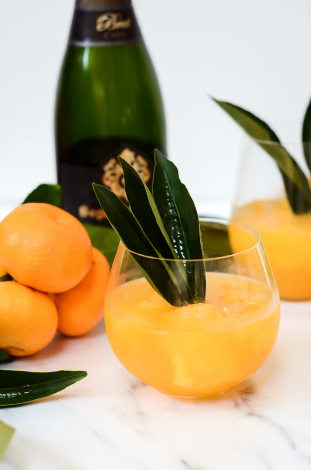 These Tangerine Sorbet Mimosas are made from the season's best tangerines plus loads of other citrus to make the perfect New Year's Day cocktail!