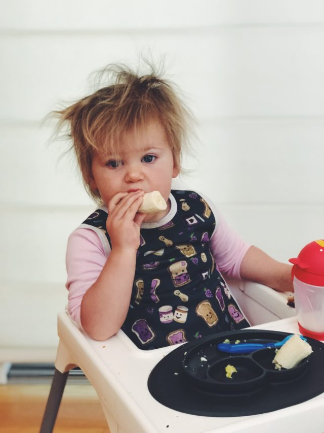 A toddler enjoying a breakfast of bananas and milk in her high chair. Breakfast is a very important part of implementing a baby or toddler meal plan!