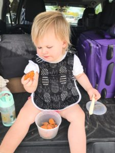 A toddler sitting in the back of a car eating some sweet potatoes.